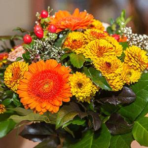 Afbeelding van een boeket bloemen beschikbaar voor ontbijtservice. Op de afbeelding zijn afgebeeld verschillende bloemen met zomerse kleuren.